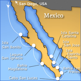 Baja Whale Tour Map
