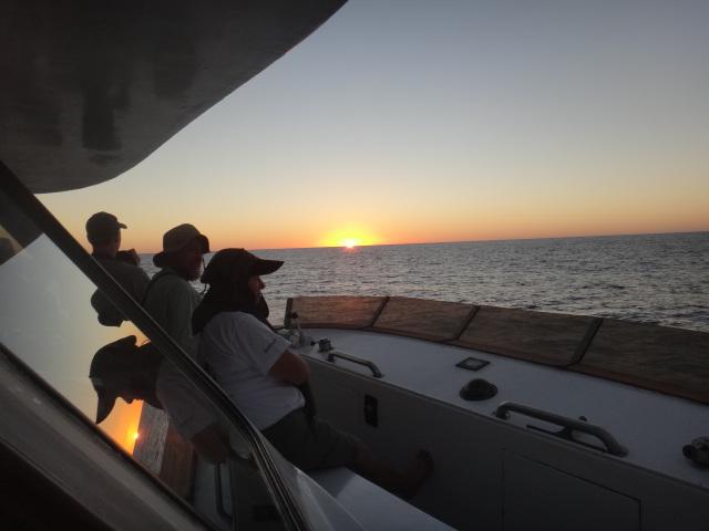 2017 Sep 4-8 Pelagic Birding Trip Sep 7 Evening Report